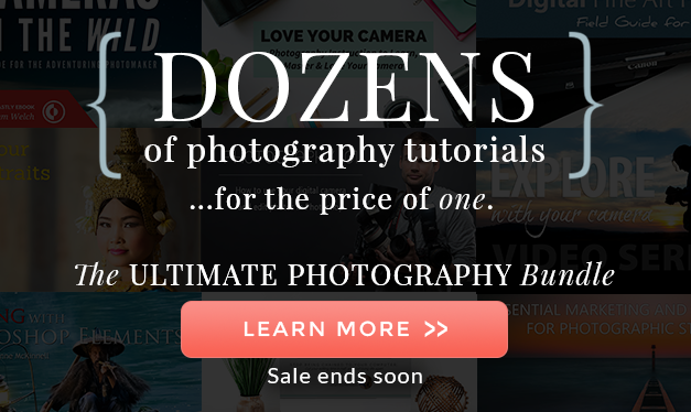 The Ultimate Photography Bundle 2018